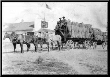 The Town was a farming community for almost one hundred years. Here, farmers transport bags of grain through downtown Gilbert.
