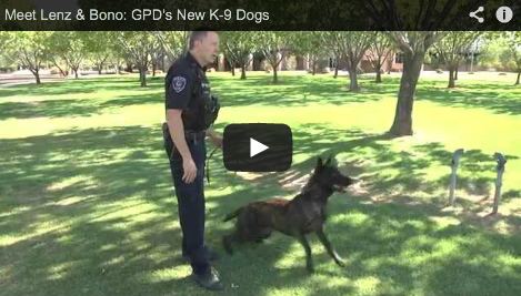 Gilbert Takes on Two New K-9 Dogs as Two Retire