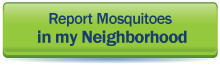 Report Mosquitos in my Neighborhood