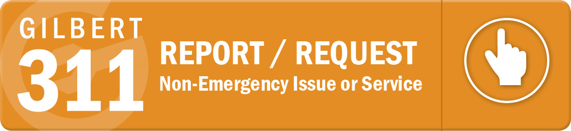 Report or Request a Non-Emergency Issue or Service