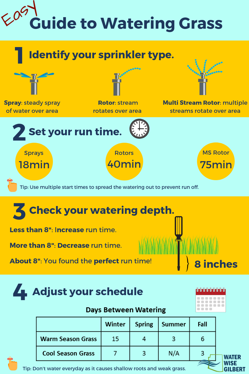 Guide to Watering Grass