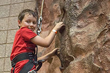 Rock Wall Image
